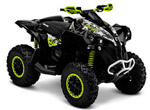 can-am-renegade-1000